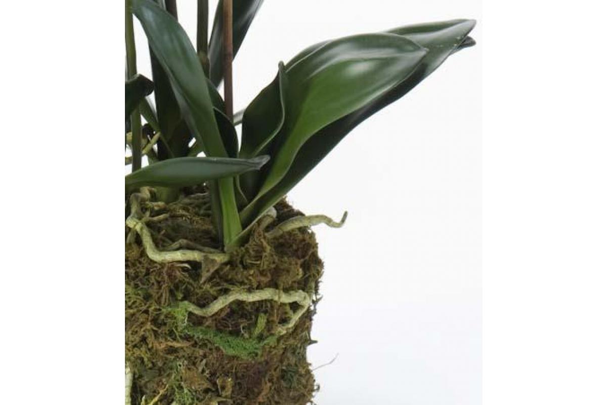 Орхидея Фаленопсис искусственная белая с корнями и листьями в торфе 80 см (Real Touch) - Фото 3