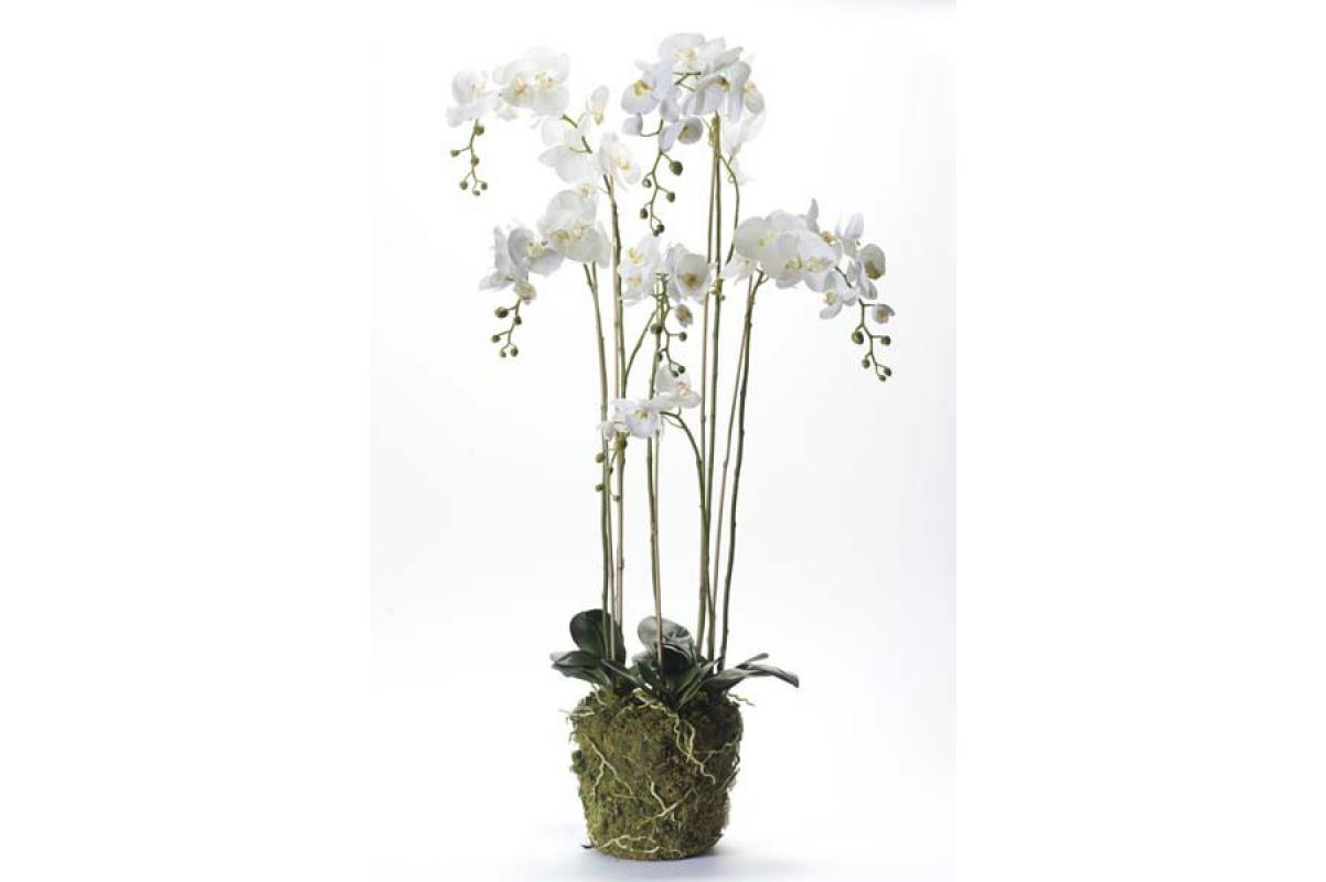 Орхидея Фаленопсис искусственная белая с корнями и листьями в торфе 145 см (Real Touch)