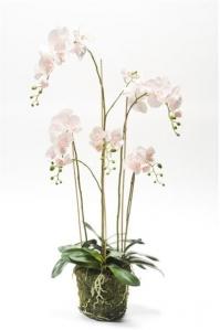 Орхидея Фаленопсис искусственная бело-розовая с корнями и листьями в торфе 130 см (Real Touch)