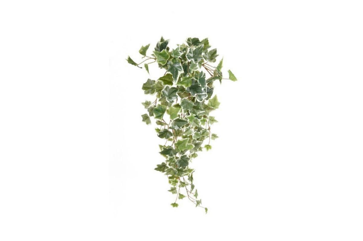 Плющ (хедера) искусственный бело-зеленый 70 см