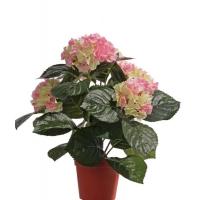 Искусственная Гортензия куст розово-зеленая в горшке 36 см