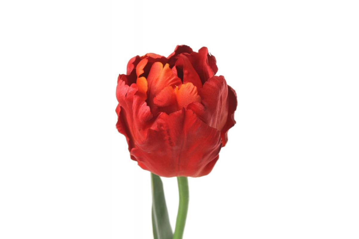 Тюльпан Попугай искусственный красный 62 см - Фото 2