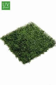Газон-коврик Самшитовой искусственный зеленый 50 x 50 см
