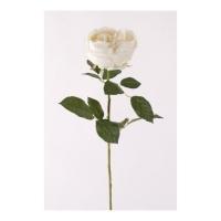 Роза Шанталь искусственная кремовая 70 см