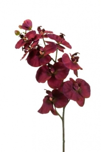 Орхидея Фаленопсис искусственная фиолетовая 100 см