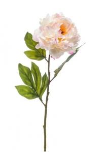 Пион распустившийся искусственный кремово-розовый 77 см