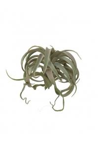 Тилландсия XL искусственная зелено-серая 25 см