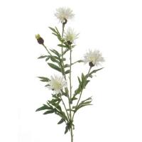 Василек искусственный белый 60 см
