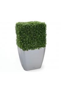 Изгородь из самшита искусственная квадрат 50 см (без кашпо)