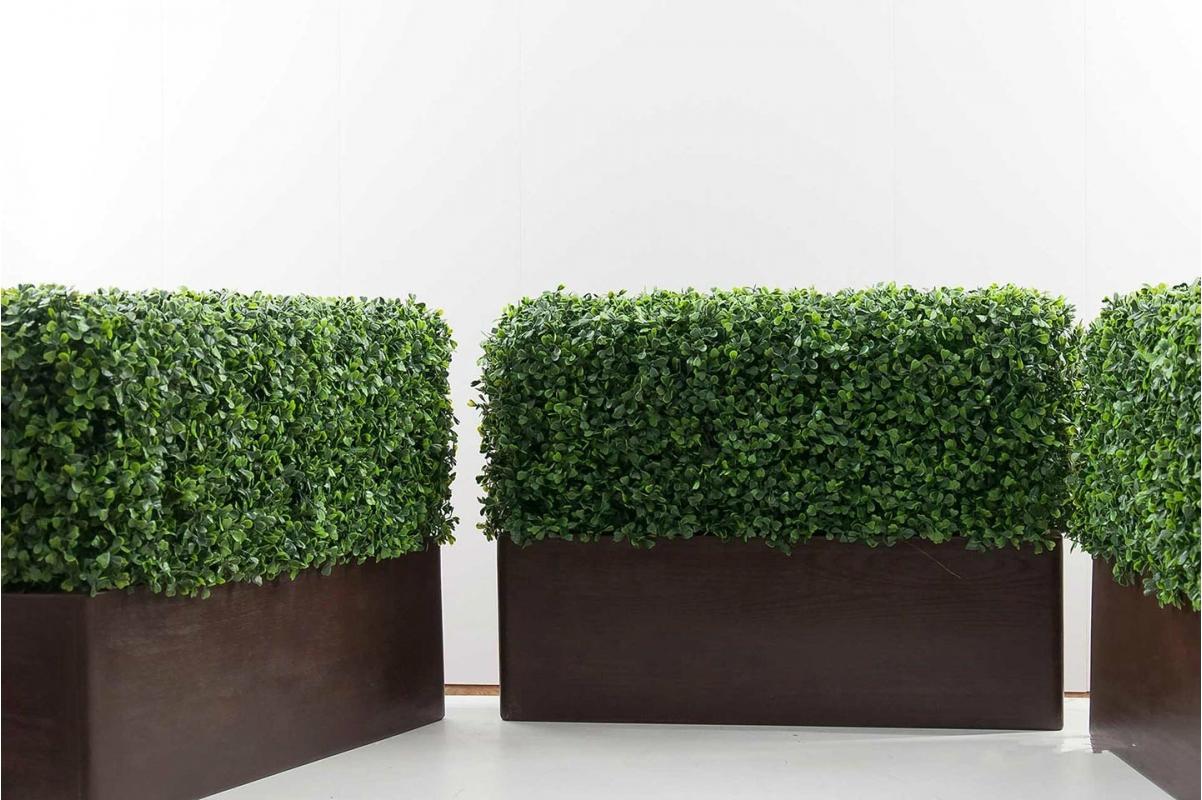 Изгородь из самшита искусственная (без кашпо) 115 x 25 x 50 см