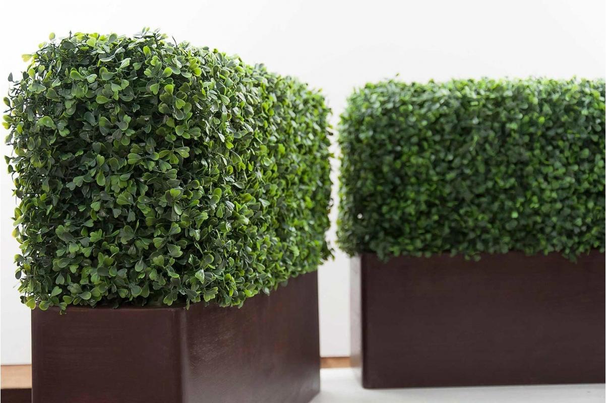 Изгородь из самшита искусственная (без кашпо) 115 x 25 x 50 см - Фото 2