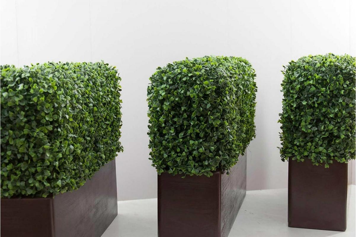 Изгородь из самшита искусственная (без кашпо) 115 x 25 x 50 см - Фото 4