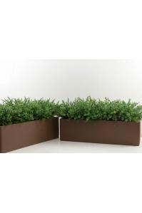 """Изгородь зеленая искусственная в кашпо """"Alpine Chocolate"""" прямоугольное 70 х 20 х 40 см"""
