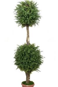 Самшит Шар искусственный Двойной уличный 160 см