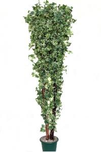 Изгородь Хедера искусственная 180 см