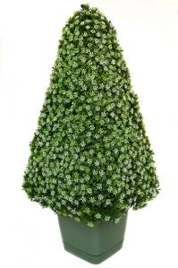 Пирамида из чайных листьев искусственная на каркасе 54 см