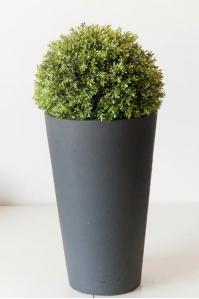 Шар чайный лист цветущий искусственный (без кашпо) 28 см  (Размер (Диаметр x В), см:28 x 28) (Размер (Диаметр x В), см:28 x 28)