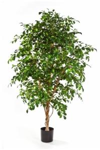 Фикус Фолиа искусственный зеленый