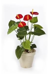 Антуриум Де Люкс куст искусственный красный без кашпо 45 см