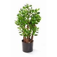 Красула (Денежное дерево) искусственная 60 см