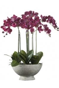 Орхидея фаленопсис искусственная бургундия в керамическом кашпо 7 цветков 65 см (Real Touch)