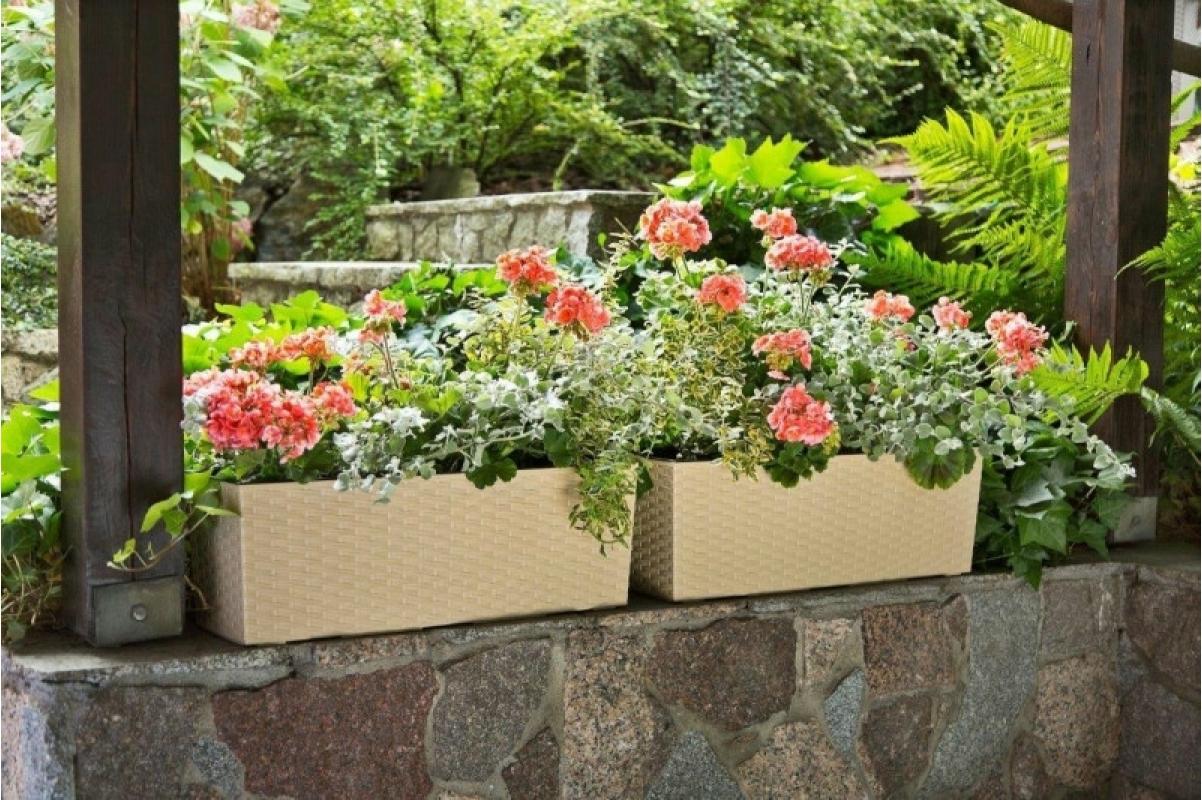 Кашпо Lamela Begonia Rattan капучино 56 x 19 x 19 см - Фото 3