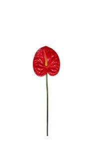 Антуриум искусственный красный 77 см