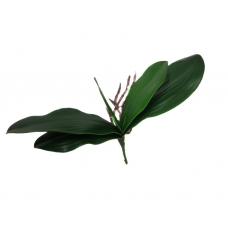 Лист Орхидеи фаленопсис с корнями искусственный 34 см