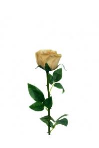 """Роза """"Porcelain"""" кремовая искусственная 62 см (Real Touch)"""
