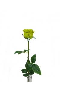 "Роза ""Porcelain"" зеленая искусственная 62 см (Real Touch)"