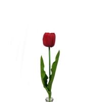 Тюльпан красный 60 см (Real Touch)