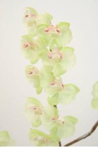 Орхидея Фаленопсис гибридный искусственная нежно-салатовая 70 см