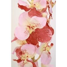 """Орхидея """"Vanda Sanderiana"""" искусственная розово-бордовая 77 см"""