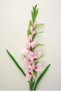 Гладиолус мелкоцветковый