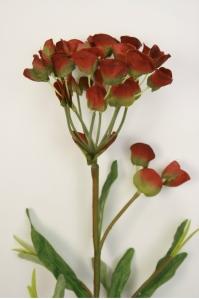 Молочай кипарисовый искусственный бордово-зеленый 76 см