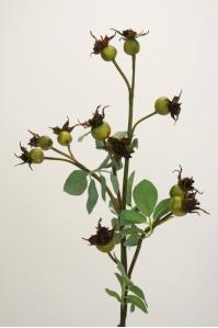 Шиповник искусственный зеленый 70 см