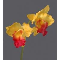 Орхидея Катлея искусственная крупная желто-розовая 42 см (Real Touch)