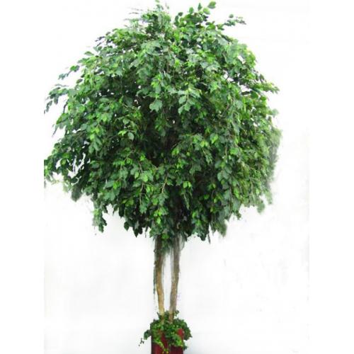Фикус Бенджамина Гигант искусственный 420 см