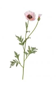 Мак Восточный искусственный светло-розовый 73 см