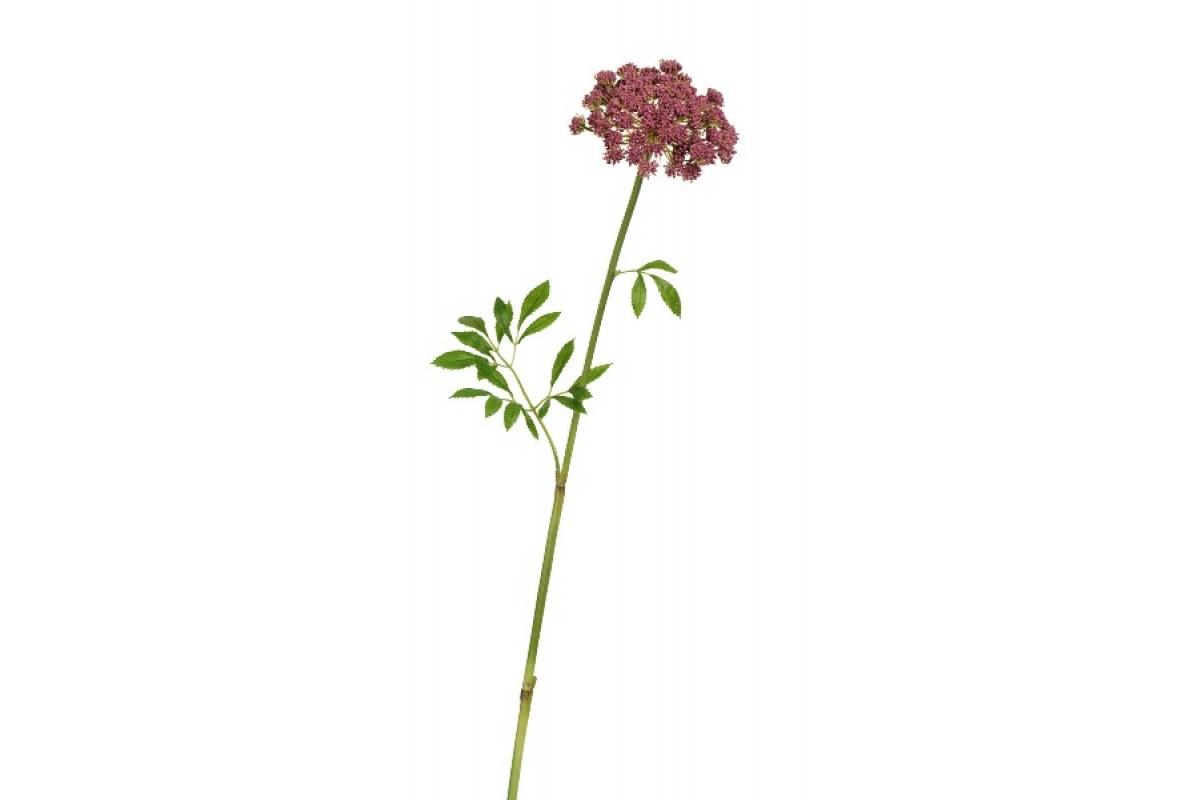 Анна королевская искусственная светло-бордовая 62 см