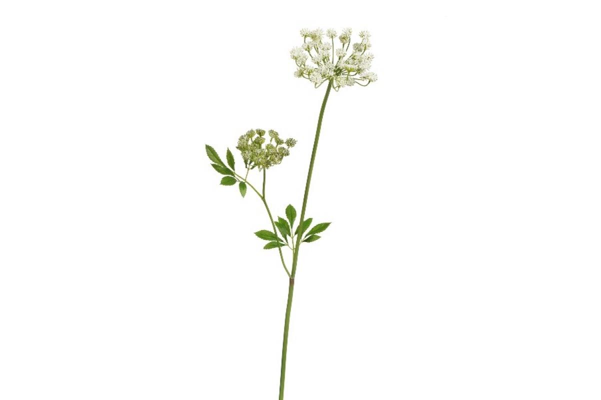 Анна королевская мидл искусственная кружевная бело-зеленая 70 см