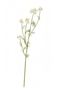 Ранункулюс полевой искусственный белый 71 см