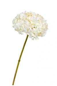 Гортензия искусственная бело-ванильная 47 см
