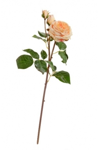 Роза Дэвид Остин Мидл ветвь искусственная светло-персиковая 50 см