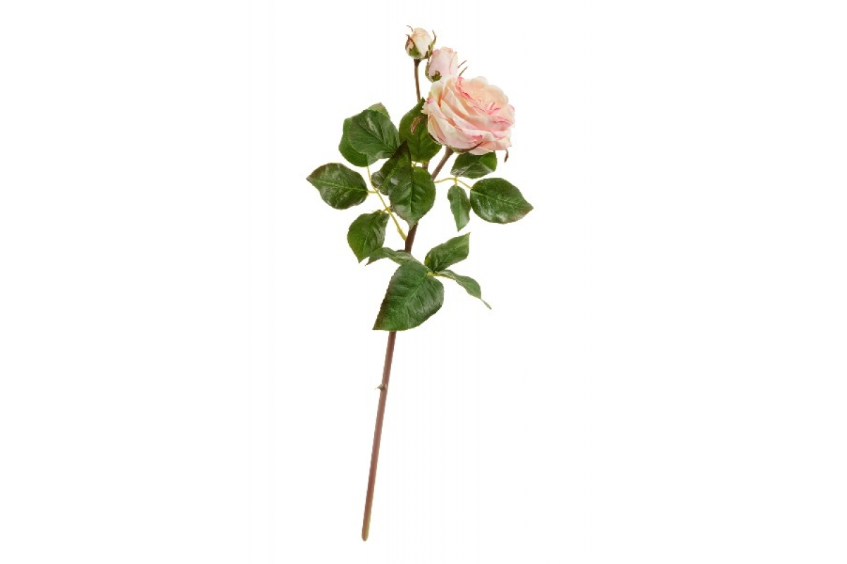 Роза Дэвид Остин Мидл ветвь искусственная кремово-розовая 50 см