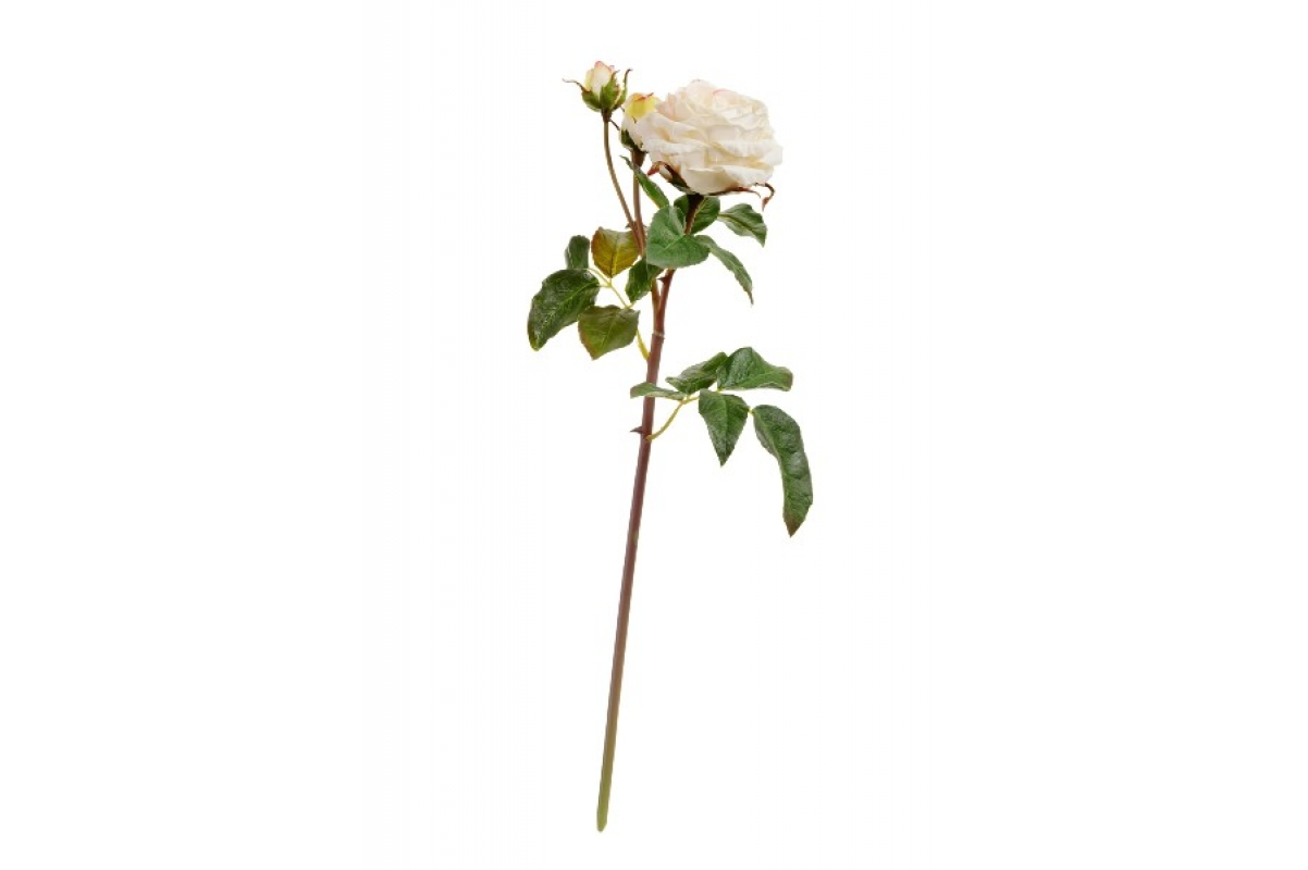 Роза Дэвид Остин Мидл ветвь искусственная бело-ванильная 50 см