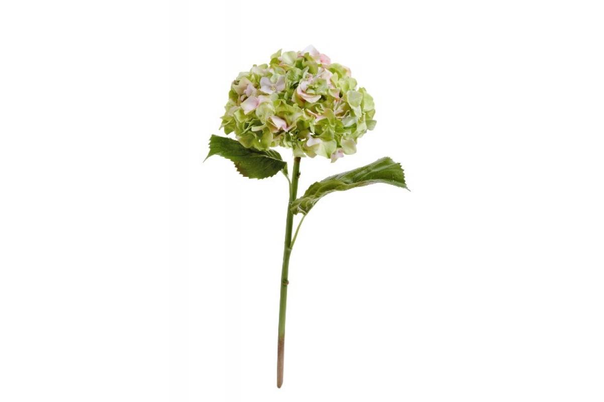 """Гортензия """"Holland Dry"""" искусственная зелено-розовая 47 см"""
