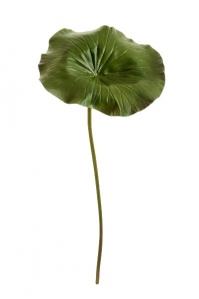 Лист Лотоса искусственный зеленый 87 см