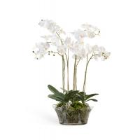 Композиция Орхидея Фаленопсис в низкой круглой вазе искусственная белая с мхом, корнями, землей 90 см (Real Touch)