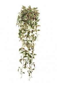 Традесканция Эйер искусственная ампельная бело-зеленая с розовым 70 см